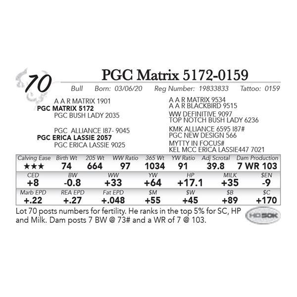 PGC Matrix 5172-0159