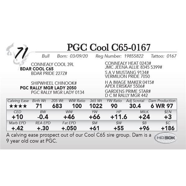 PGC Cool C65-0167