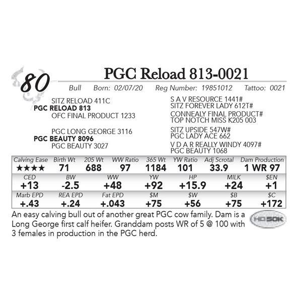 PGC Reload 813-0021