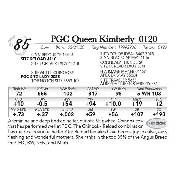 PGC Queen Kimberly 0120