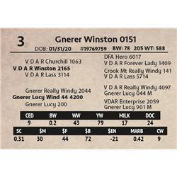 Gnerer Winston 0151