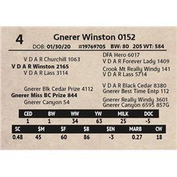 Gnerer Winston 0152