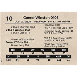 Gnerer Winston 0105