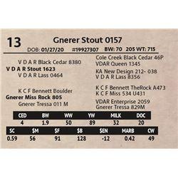 Gnerer Stout 0157