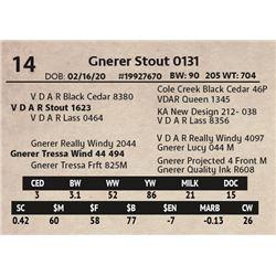 Gnerer Stout 0131