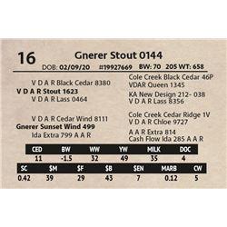 Gnerer Stout 0144