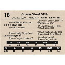 Gnerer Stout 0134
