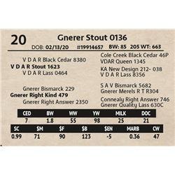 Gnerer Stout 0136
