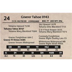 Gnerer Tahoe 0143