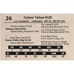 Gnerer Tahoe 0128