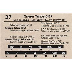 Gnerer Tahoe 0127