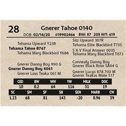 Gnerer Tahoe 0140