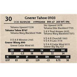 Gnerer Tahoe 0103