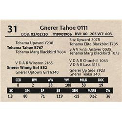 Gnerer Tahoe 0111