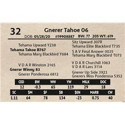 Gnerer Tahoe 06
