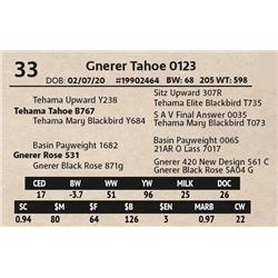 Gnerer Tahoe 0123
