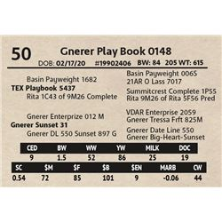 Gnerer Play Book 0148