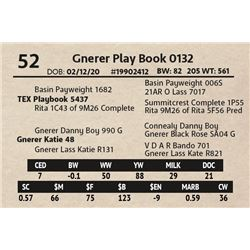 Gnerer Play Book 0132