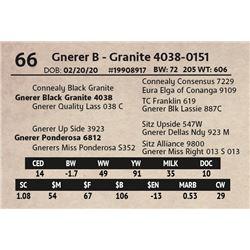 Gnerer B - Granite 4038-0151