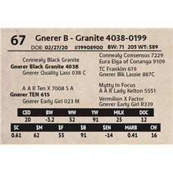 Gnerer B - Granite 4038-0199