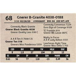 Gnerer B-Granite 4038-0188