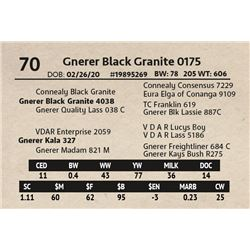 Gnerer Black Granite 0175