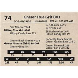 Gnerer True Grit 003