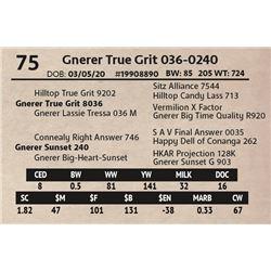 Gnerer True Grit 036-0240