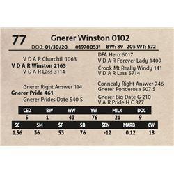 Gnerer Winston 0102