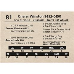 Gnerer Winston 8652-0150