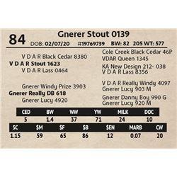 Gnerer Stout 0139