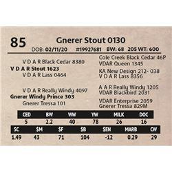 Gnerer Stout 0130