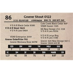 Gnerer Stout 0122