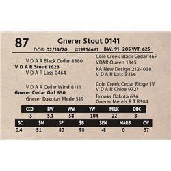 Gnerer Stout 0141