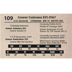 Gnerer Guinness 831-0167