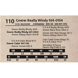 Gnerer Really Windy 924-0154