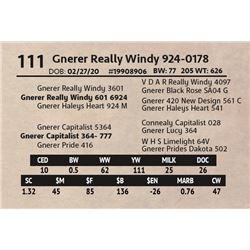 Gnerer Really Windy 924-0178