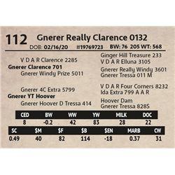 Gnerer Really Clarence 0132