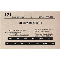 SEE SUPPLEMENT SHEET