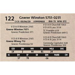 Gnerer Winston 5751-0231