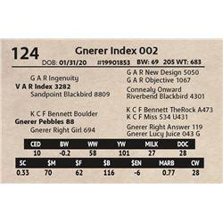 Gnerer Index 002
