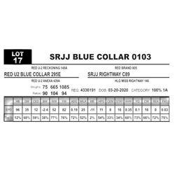 SRJJ BLUE COLLAR 0103