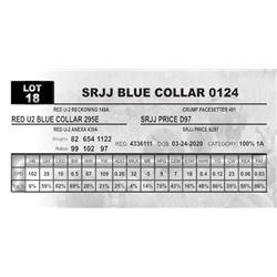 SRJJ BLUE COLLAR 0124