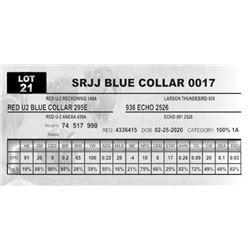 SRJJ BLUE COLLAR 0017