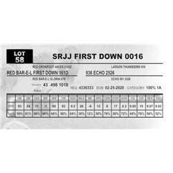 SRJJ FIRST DOWN 0016