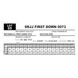 SRJJ FIRST DOWN 0073