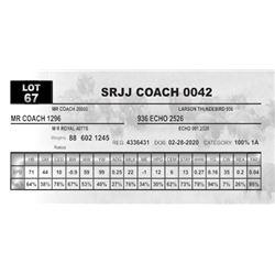 SRJJ COACH 0042