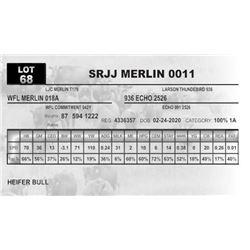SRJJ MERLIN 0011