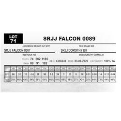 SRJJ FALCON 0089