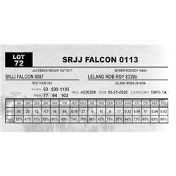 SRJJ FALCON 0113